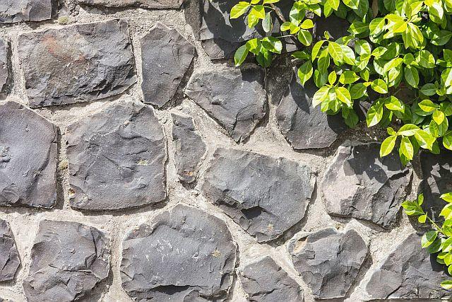 Foerg Steinreiniger/Stone Cleaning